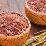 Ăn gạo lứt có giảm cân không?